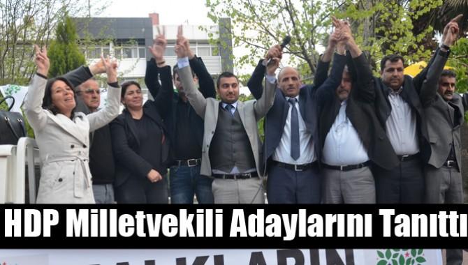 HDP Milletvekili Adaylarını Tanıttı