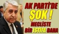 AK Parti de İstifa