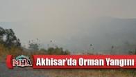 Akhisar'da Orman Yangını