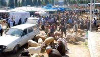 Akhisar'da Kurban Hareketliliği Başladı