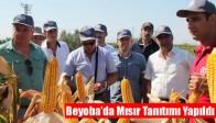 Beyoba'da Mısır Tanıtımı Yapıldı