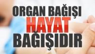 Organ Bağışı Hayat Bağışıdır