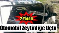 Otomobil Zeytinliğe Uçtu: 2 Yaralı