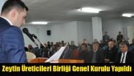 Zeytin Üreticileri Birliği Genel Kurulu Yapıldı